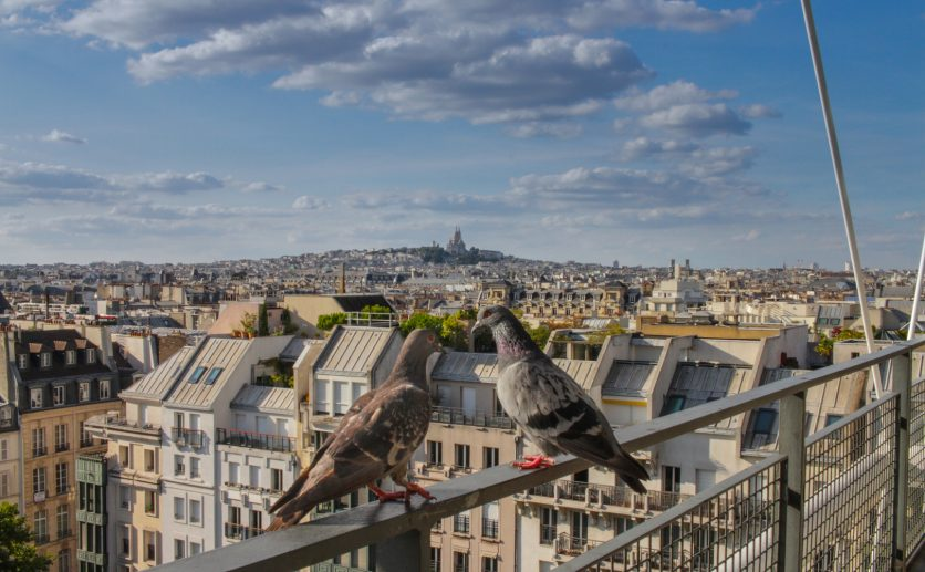 How well do you know Paris districts?