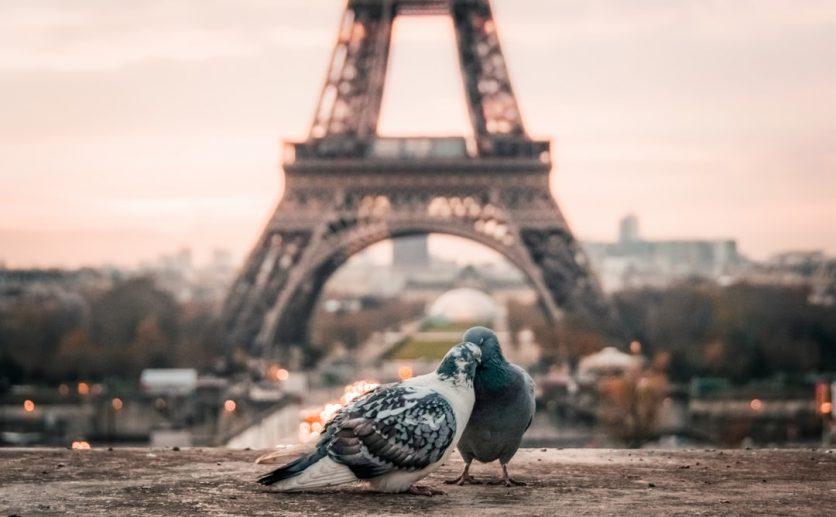 Parigi gratis: musei, attrazioni e cose da fare gratis: